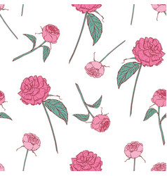 elegant floral seamless pattern with beautiful vector image vector image