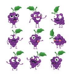 Funny bunch of grapes - isolated cartoon vector
