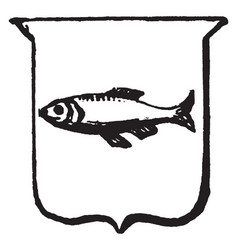 Heraldry naiant have a fish on a shield vintage vector