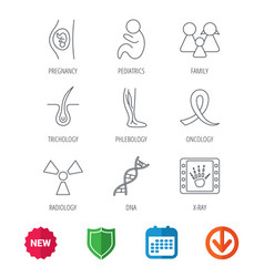 Pregnancy pediatrics and family icons medical vector