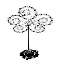 tree of roses vector image vector image