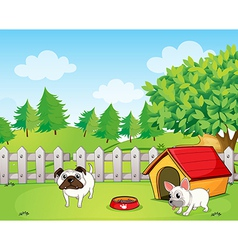 Two bulldogs vector image vector image