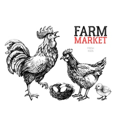 Farm market poster design template chicken rooster vector