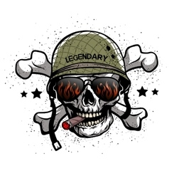 Skull with glasses and helmet vector image