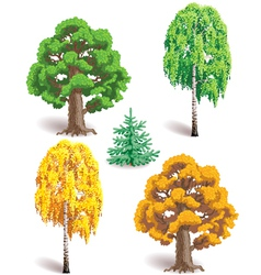 Trees in seasons vector