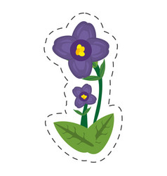 Cartoon african violet flower vector