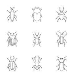 Species of beetles icons set outline style vector