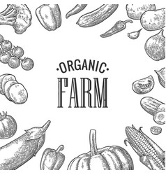 Set vegetables and organic farm lettering vector