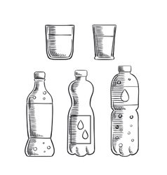 Soda glasses and mineral water bottles sketch vector