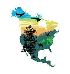 American wildlife map vector image
