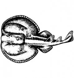 ray vector image