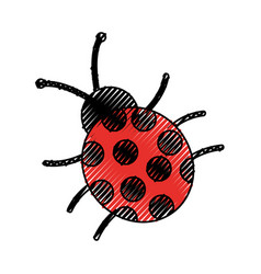 Cute ladybug isolated icon vector