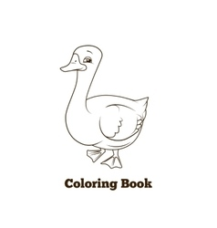 Coloring book goose cartoon educational vector