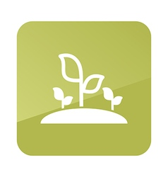 Plant sprout icon garden vector
