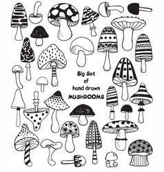 Big set of sketch hand drawn doodle mushrooms vector