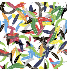 colorful seamless random feather pattern vector image