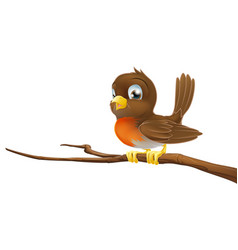 Cute robin sitting on a tree branch vector