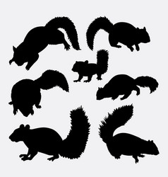 Squirrel mammal animal silhouette vector