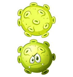 Close up bacteria front and back view vector image vector image