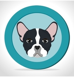 Cute face puppy blue label vector