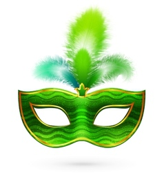 Green carnival mask with feathers vector image