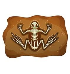 Fosil vector image