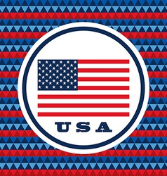 Usa celebration design vector