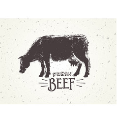 graphic of the cow with inscriptions hand-drawn vector image vector image