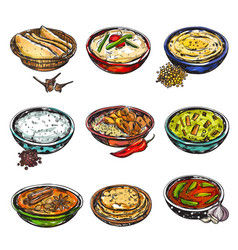 indian food icon set vector image vector image