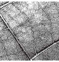 Leaf Overlay Background vector image vector image