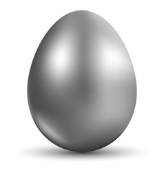 Silver egg isolated on white background for vector