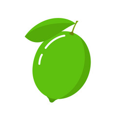Lime icon citrus fruit vector
