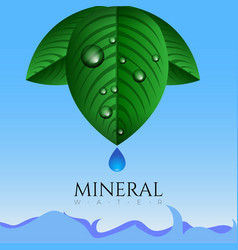 mineral water vector image vector image