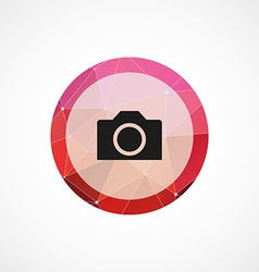 photo camera circle pink triangle background icon vector image