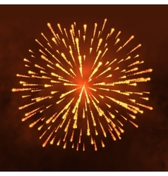Salute Firework isolated on dark background vector image