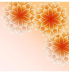 Beautiful wallpaper with orange flowers vector