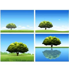 Oak tree background vector
