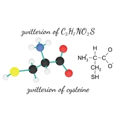 C3H7NO2S zwitterion of cysteine amino acid vector image