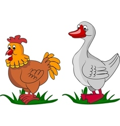 Cartoon goose and chicken on grass vector image vector image