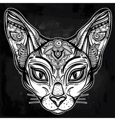 Vintage ornate cat head with tribal ornaments vector image vector image