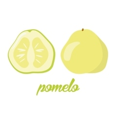 Pomelo fruits poster in cartoon style depicting vector