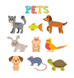 Set of pets cute home animals in cartoon style vector