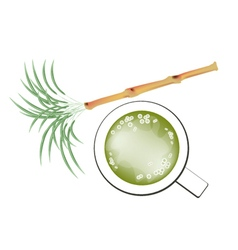 Fresh sugarcane and refreshing sugar cane juice vector