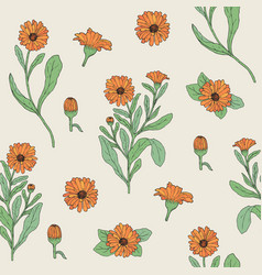 Colored botanical seamless pattern with blooming vector