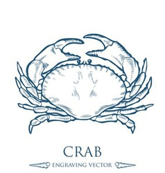 Crab drawing vector