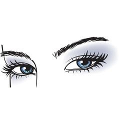 female blue eyes vector image