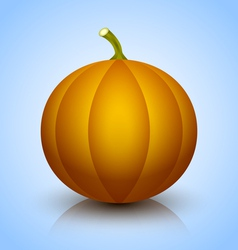 Pumpkin icon vector