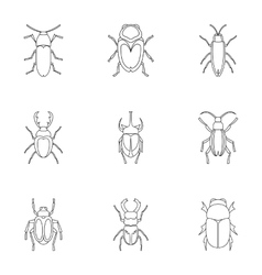 Crawling beetles icons set outline style vector
