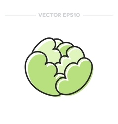 Doodle cabbage vector