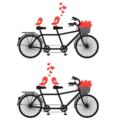 tandem bicycle with birds in love vector image